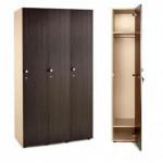 Шкафы для раздевалок  (9)